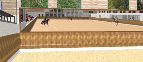 Equine operation for dressage training