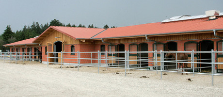 We build an equine-pension operation for you