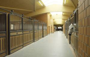 Riding facility for the dressage sport