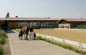 Construction of a training stable