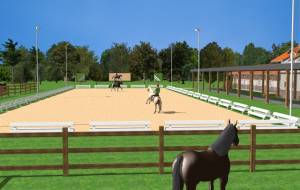 Planning of an equine- veterinary clinic
